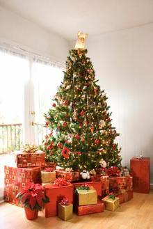 Christmas PLR articles