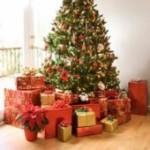 Christmas PLR