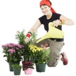 Container Gardening PLR